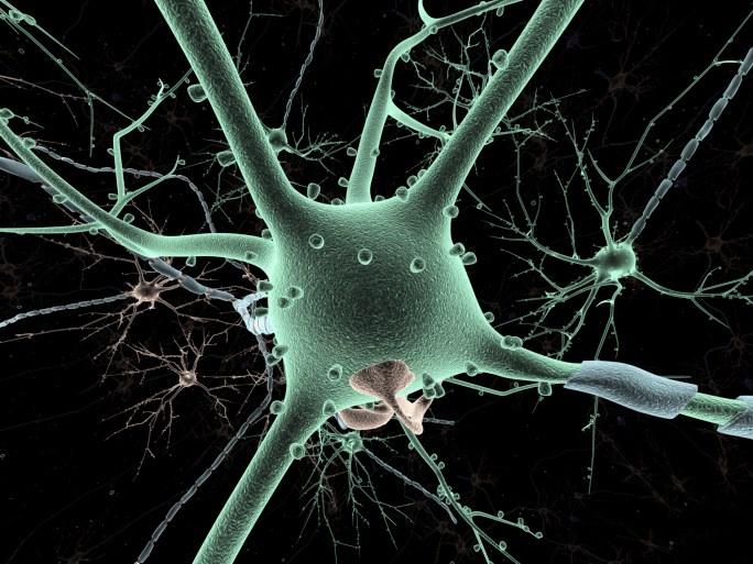 Deep Brain Stimulation Aids Memory in Alzheimer's