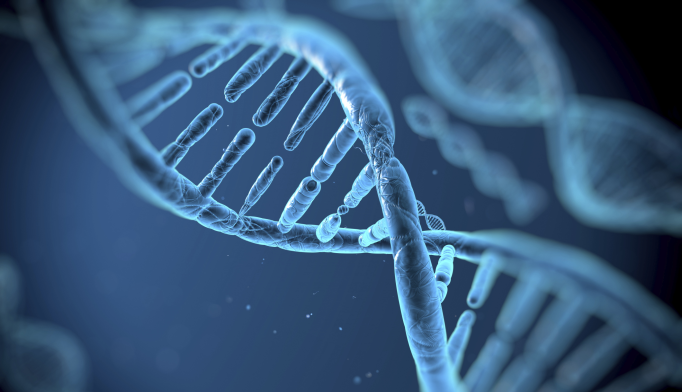 Traumatic Experiences Can Alter Genome