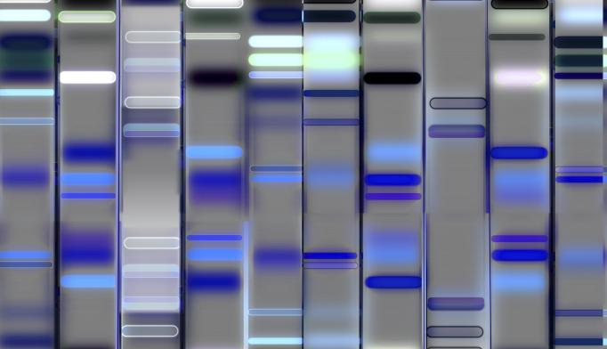 Autism Speaks, Google to Develop Autism Genomic Database