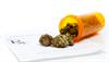 Illicit Cannabis Use Among Adults Up Due to Medical Marijuana Laws