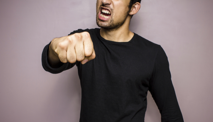 Predictors of Aggression in Patients With Bipolar Disorder, Schizophrenia