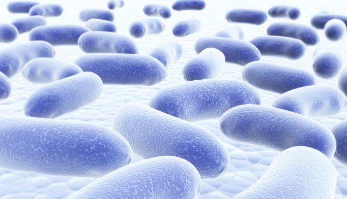 Bacteria in Throat Linked to Schizophrenia
