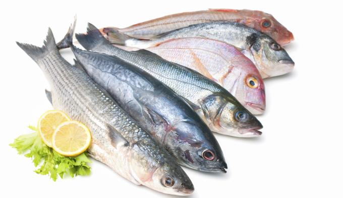 Eating Fish May Reduce Depression Risk