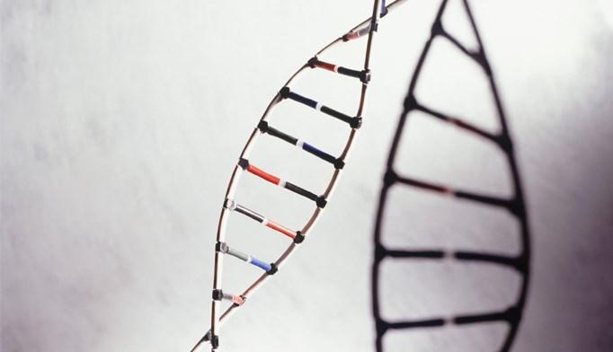 dna biopolar disorder gene variant