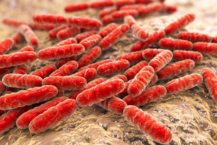Lower diversity of microbial populations in the human gut has been identified in individuals with major depressive disorder.