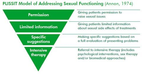 The PLISSIT model assists clinicians in discussing sexual health with patients.