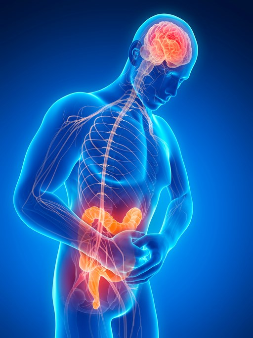 Researchers sought to identify cases in which clozapine was the causal agent in serious gastrointestinal hypomotility events.