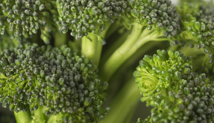 Chemical in Broccoli May Alleviate Autism Symptoms