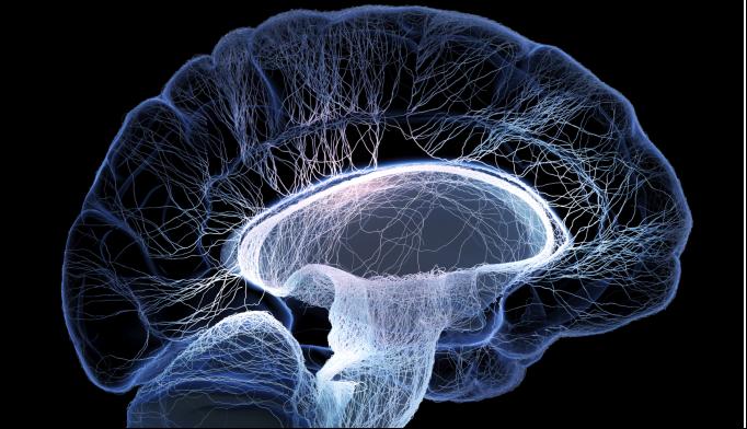 BRAIN Initiative Could Improve Understanding of Mental Illnesses