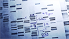 How Genetic Sequencing Can Improve Our Understanding of Autism