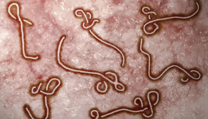 The Ebola Outbreak and Mental Health