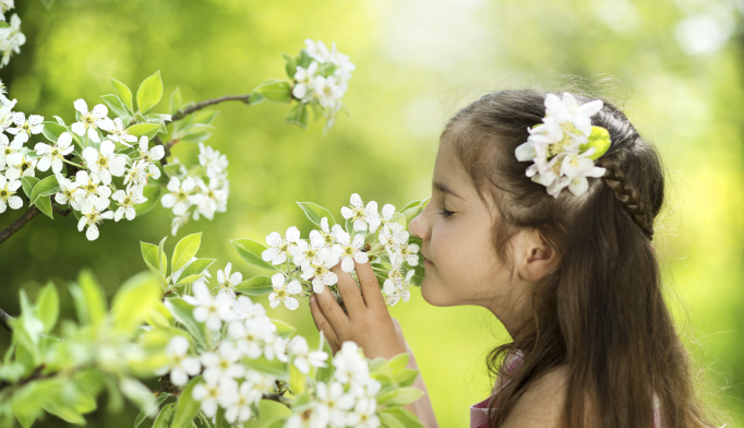Smell Test Could Provide Earlier Diagnosis of Autism