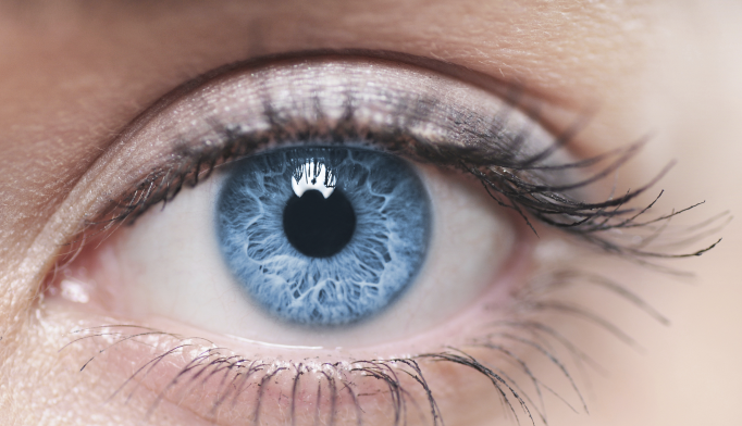 Eye Pigment Levels May Provide Biomarker of Cognitive Function