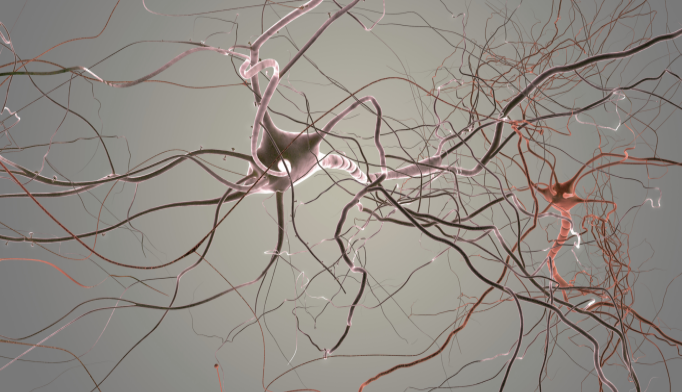 'Brain Cell Burnout' May Be at Root of Parkinson's