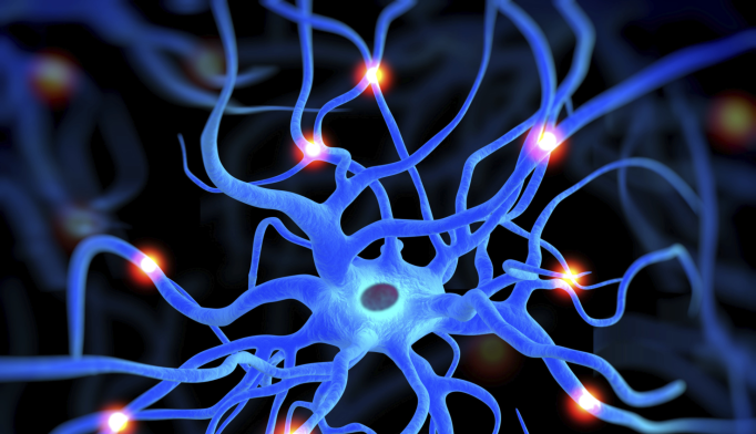 Brain Cell Deficit May Contribute to Schizophrenia