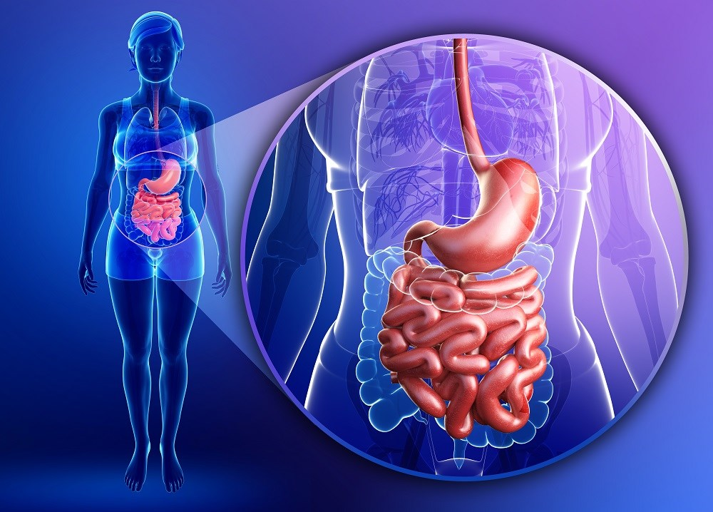 Ghrelin Agonist Decreased Gastric Emptying Time in Women With Anorexia