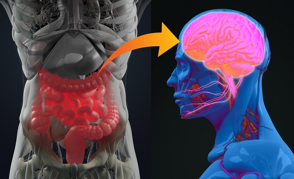 The Way to the Head May Be Through the Gut: Probiotics for Depression