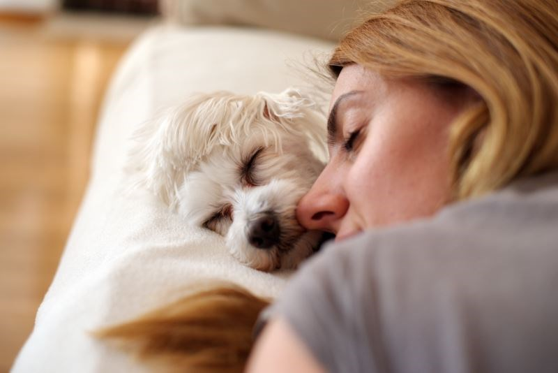 The Benefit of Pets to People With Mental Health Conditions