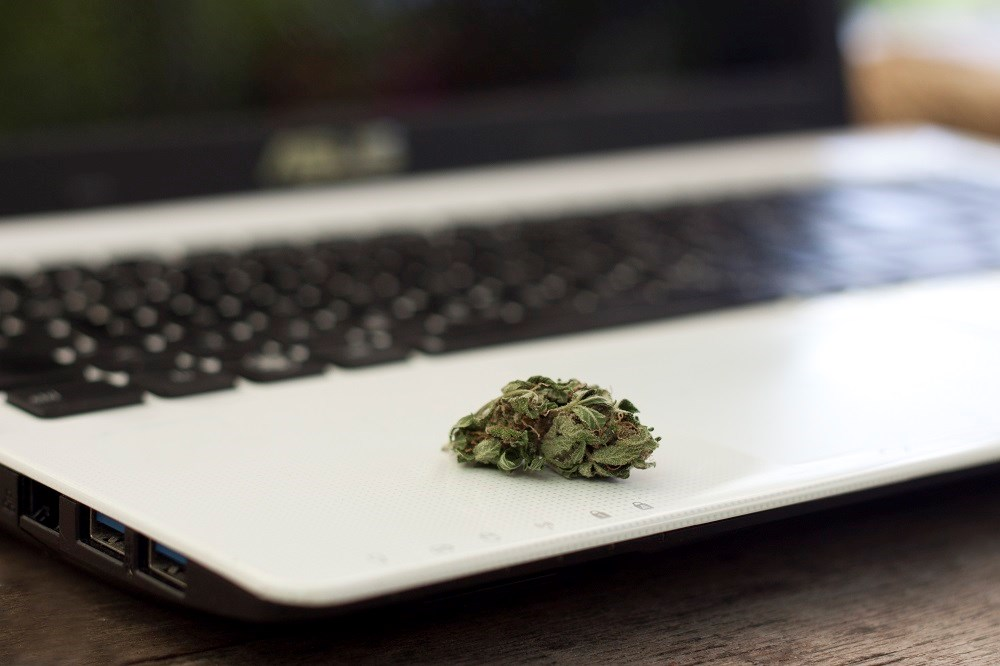 The scale of the online marketplace for marijuana increased from 2005 to 2017.