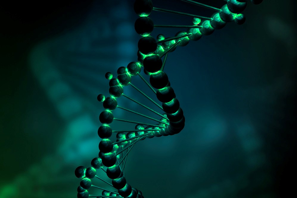 Is Using Genealogy Data to Solve Crimes Taking DNA Analysis a Step Too Far?