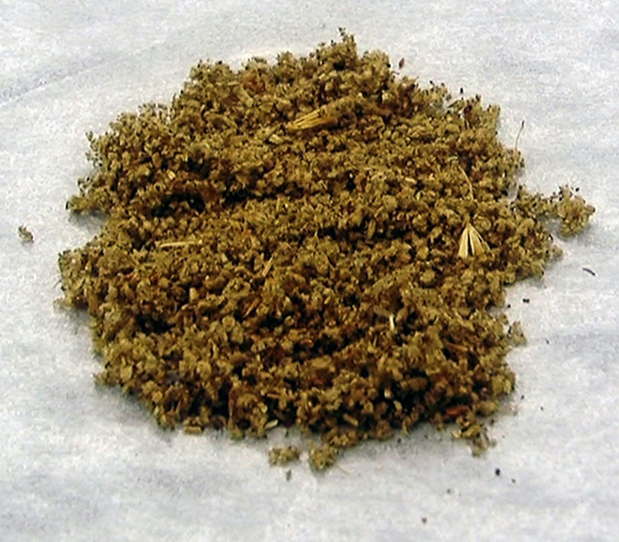 Producers of these synthetic cannabinoids have added brodifacoum, which is thought to extend the duration of the high. <i>Credit: DEA/Science Source</i>