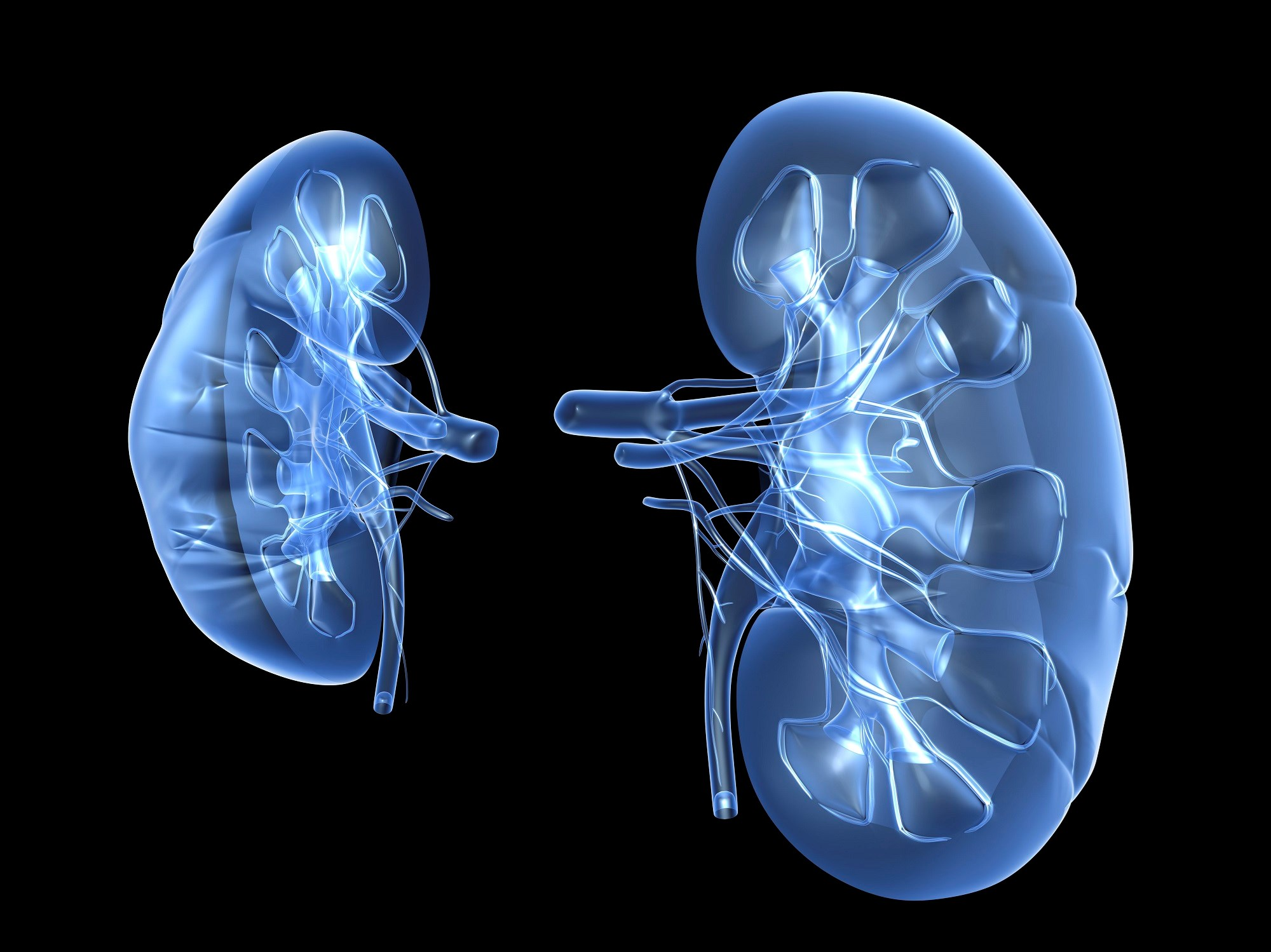 Behavioral Executive Dysfunction Associated With Chronic Kidney Disease