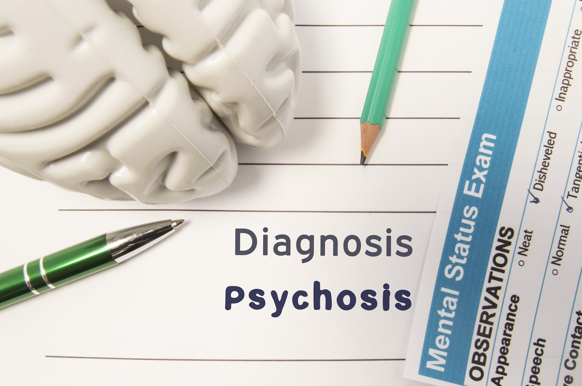 Risk Factors for Very Late-Onset Schizophrenia-Like Psychosis