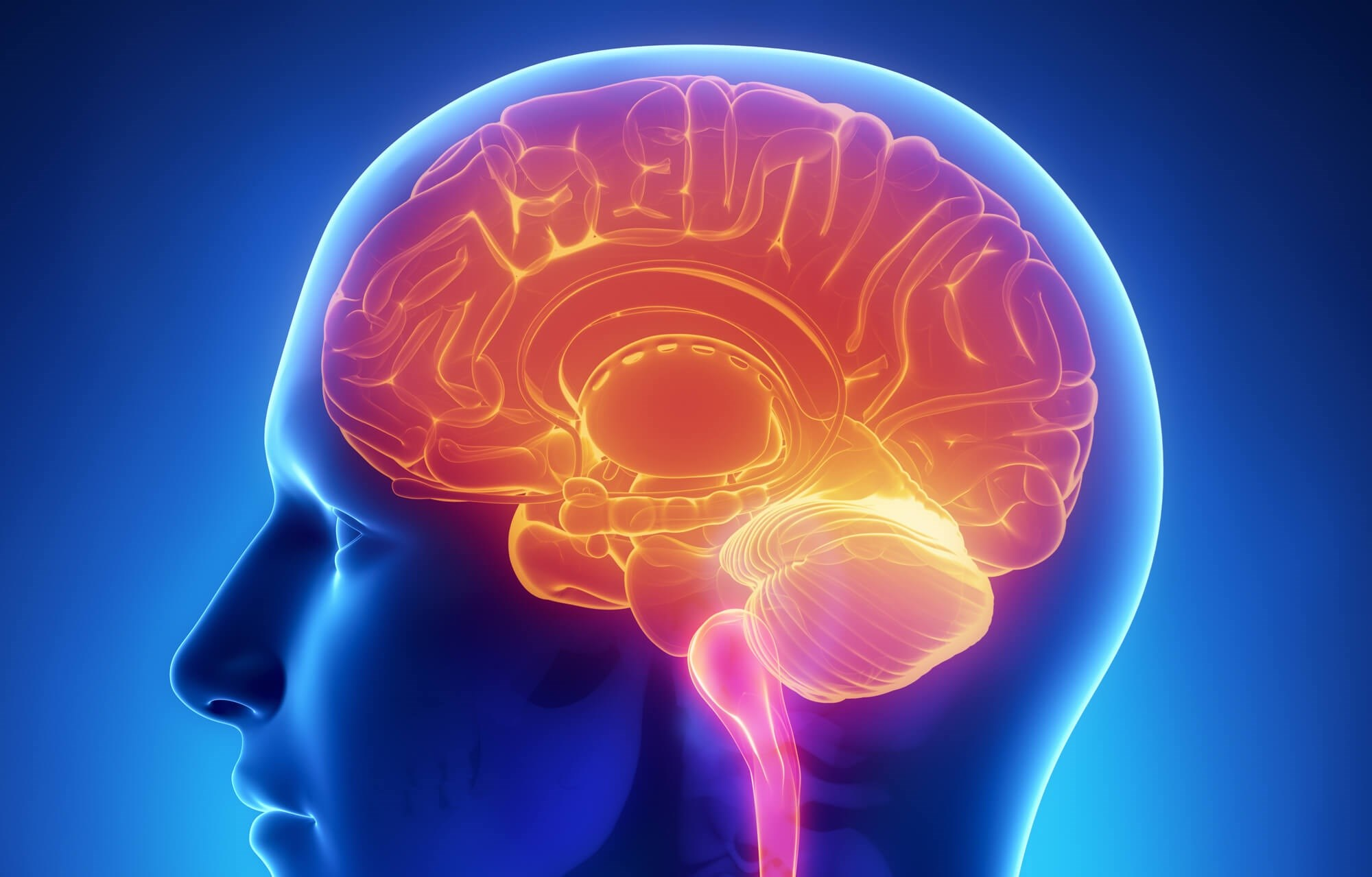 Patients with ADHD may require careful monitoring to permit early detection and treatment of disorders of the basal ganglia or cerebellum.