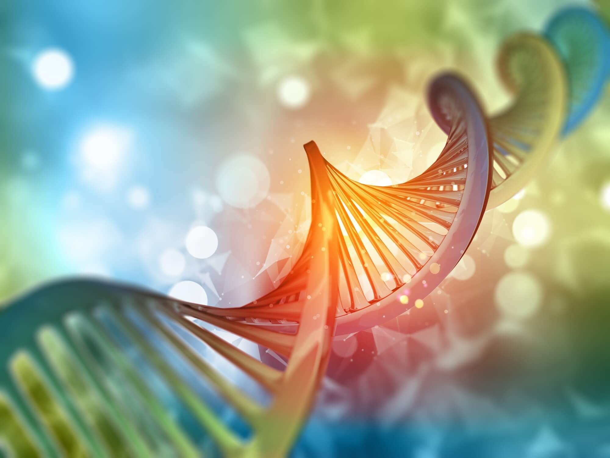 Genetic Variations Between Alcohol Consumption and Alcohol Use Disorder