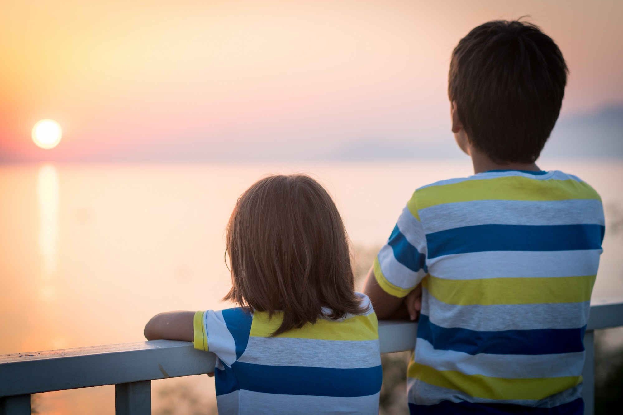 Later-born siblings of children with ASD or ADHD have an elevated risk of being diagnosed with the same or the other disorder.